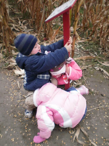 Corn maze 2010 (21)