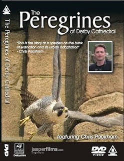Front cover of peregrione DVD - price now reduced