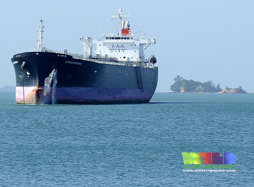 Large ship off Pulau Semakau