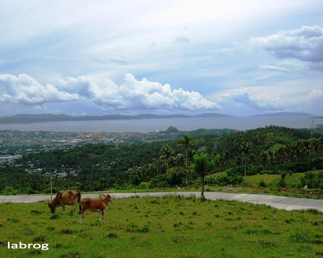 Albay Gulf and Legazpi, view from Estanza