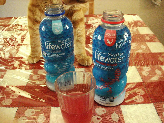 SoBe LIfewater Review