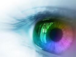 Foods That Help to Improve Eyesight