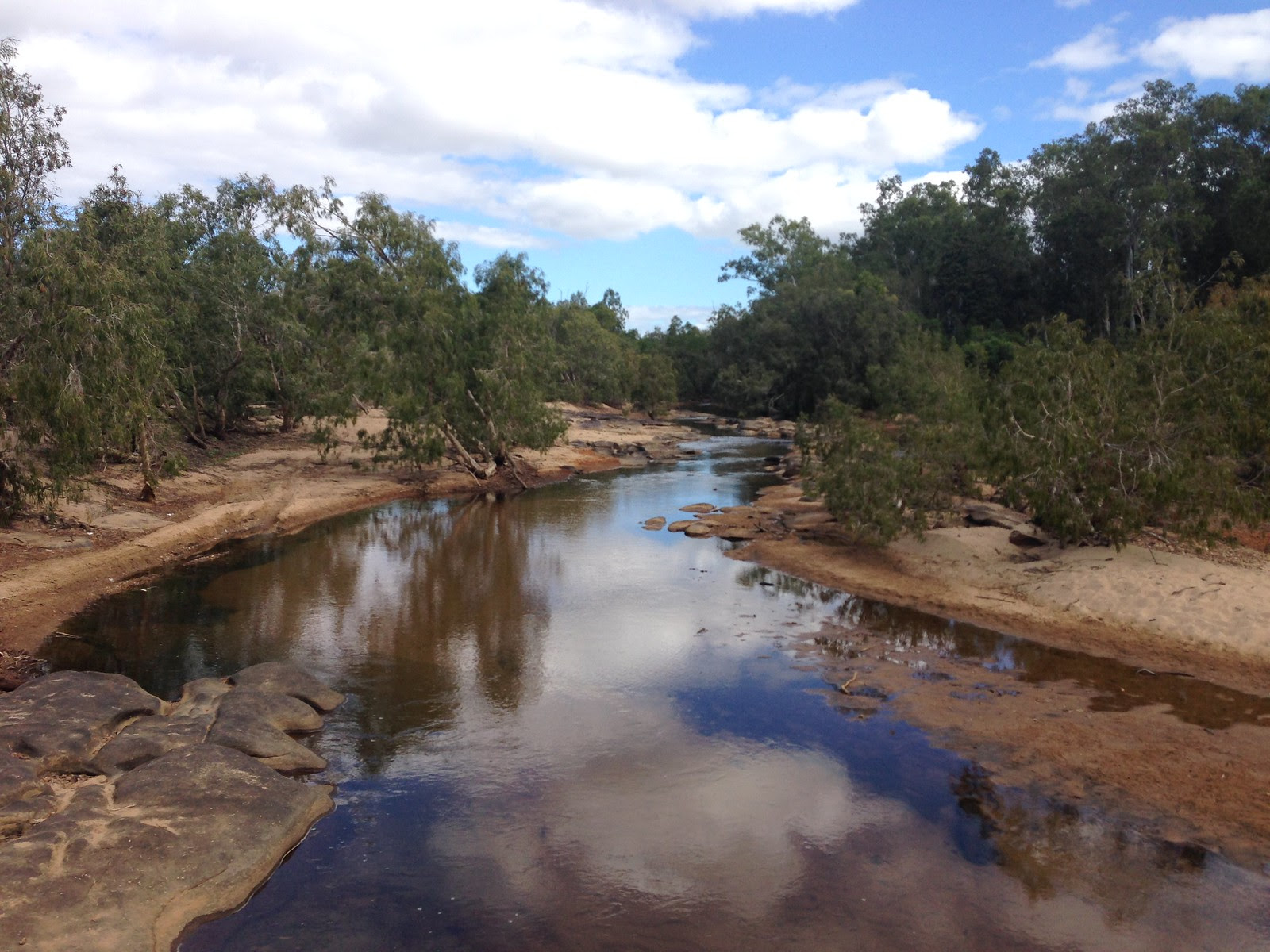 Riparian vegetation, Laura River, Cape York