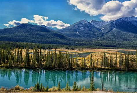 bow river alberta canada albert mountain valley tree hd
