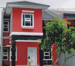 Red House Cat Color Combination