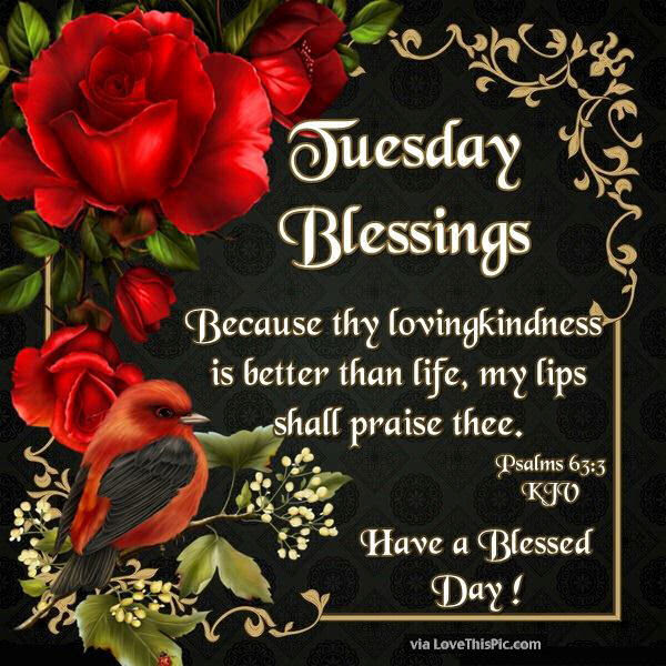 Tuesday Blessings Have A Blessed Day Religious Quote Pictures