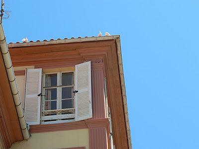 colombes sur le toit.jpg