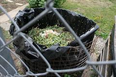 basel garden 015
