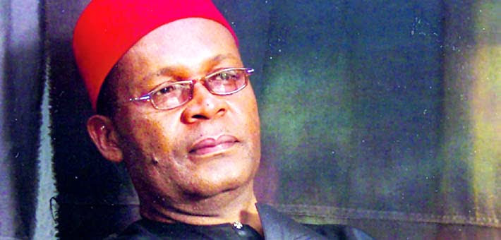 You are 'crazy', seriously in need of medical attention – PDP blasts Igbokwe
