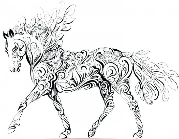 Realistic Horse Head Drawing | Free download on ClipArtMag