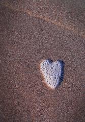 seafoam love