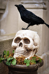 SkullPlanter