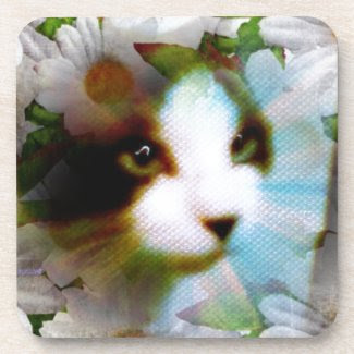 canvas kitty coasters