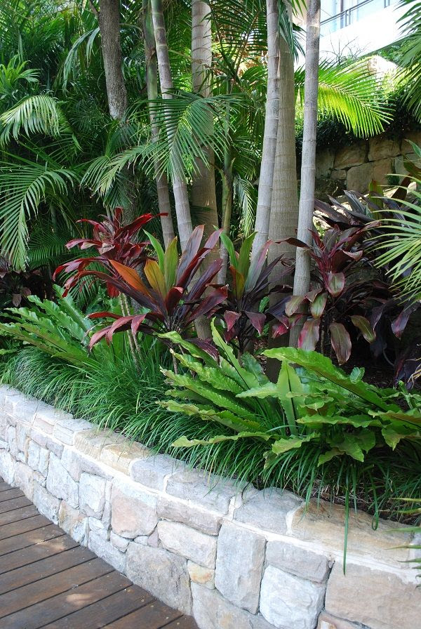 Backyard tropical landscaping ideas nz