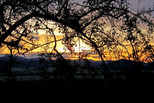 Serengeti Sunset by TonyKRO