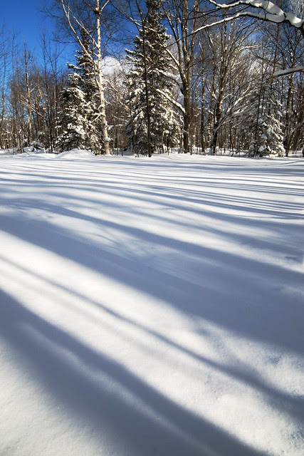 A view of shadows on a ski trail, with blue sky.