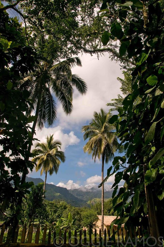 Lake Sebu - Tropical Scene from the Roadside