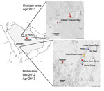 Thumbnail of Bat sampling sites and locations of home and workplace of index case-patient with Middle East respiratory syndrome, Bisha, Saudi Arabia.