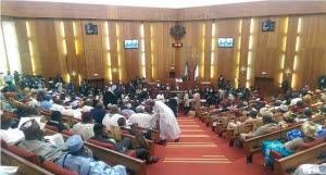 •The Senate during plenary