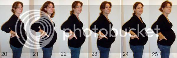Belly Parade, weeks 20 - 25
