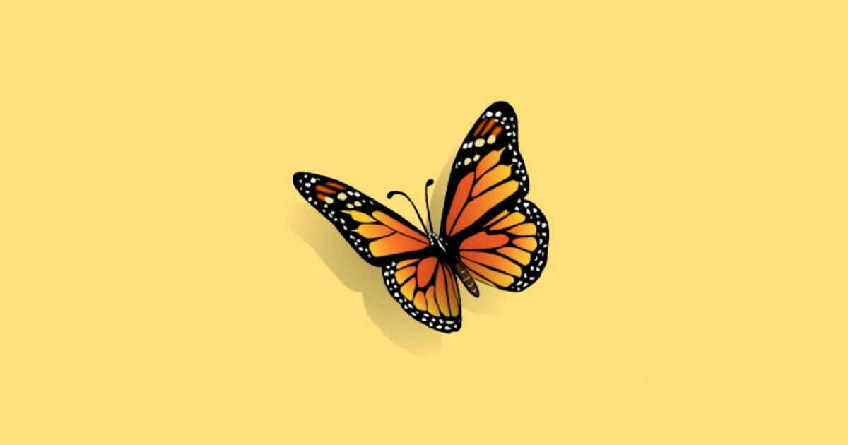 Aesthetic Design Aesthetic Butterfly Iphone Butterfly ...