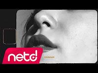 LYCN - Meridiana - netd müzik