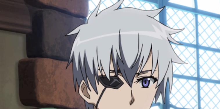 Akame Ga Kill Leader