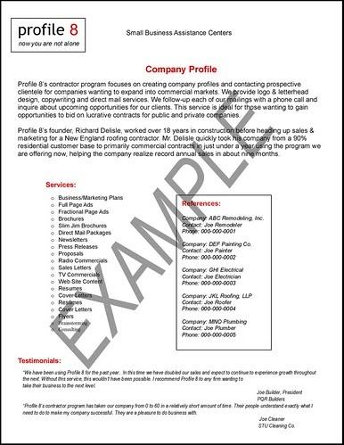 Arpablogs company profile sample flashek Gallery
