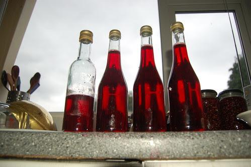 raspberry vinegar Aug 12