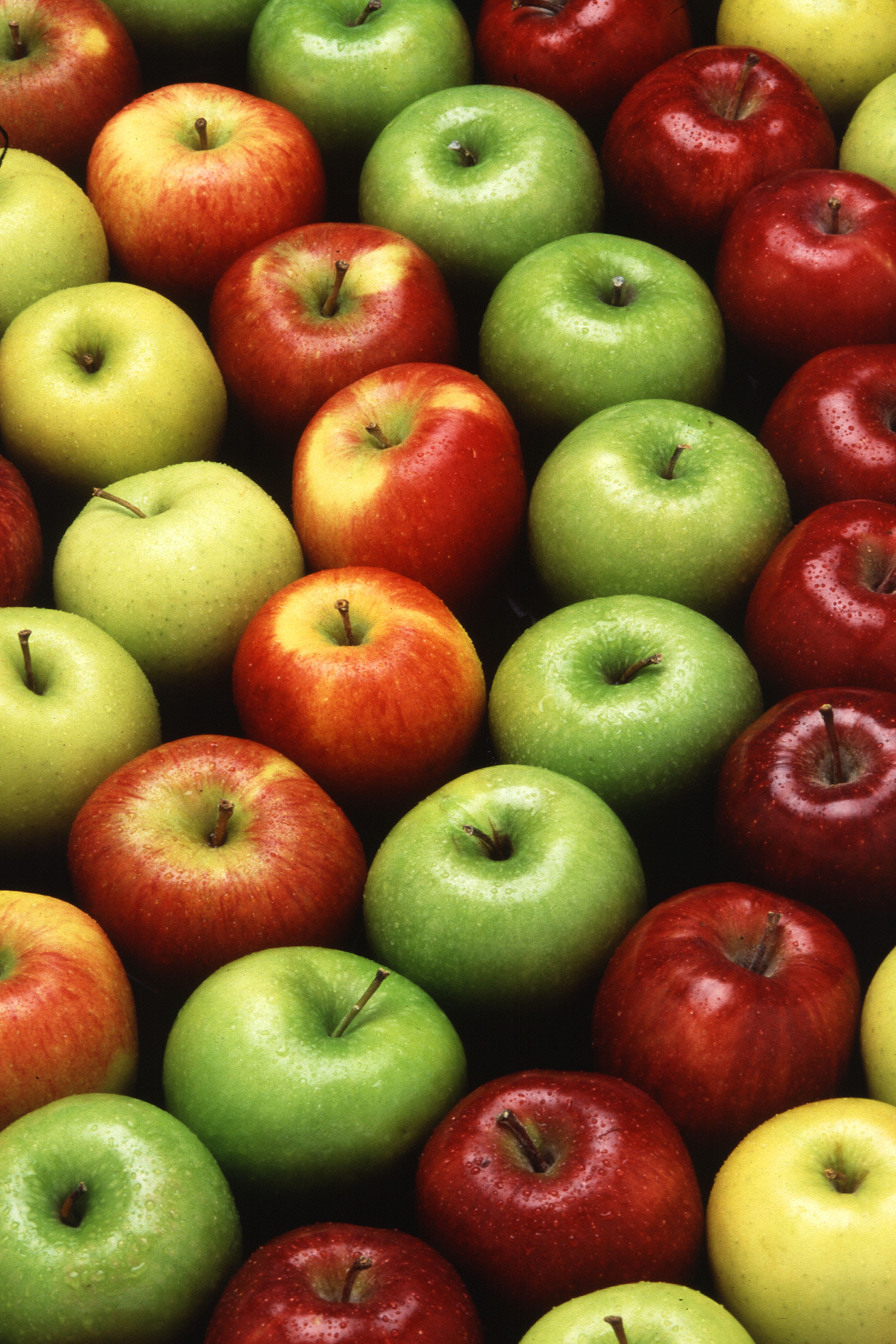 Picture of different colours and varieties of apples