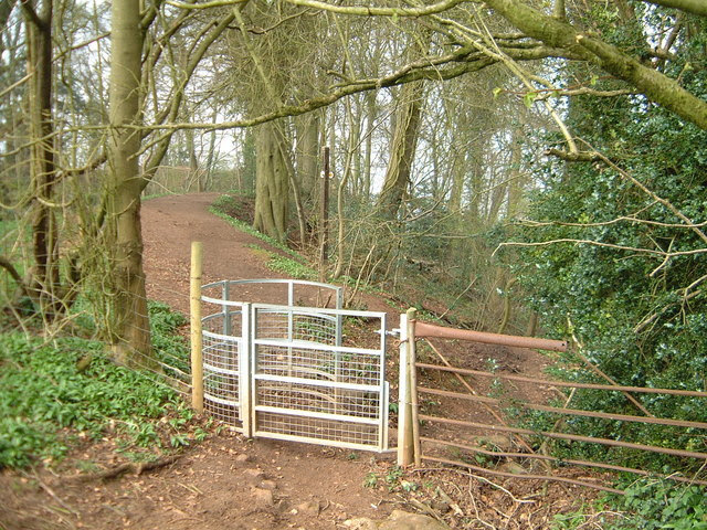 File:Kissing Gate near the Devil's Pulpit - geograph.org.uk - 752097.jpg