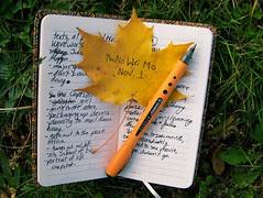 240/365 National Novel Writing Month begins