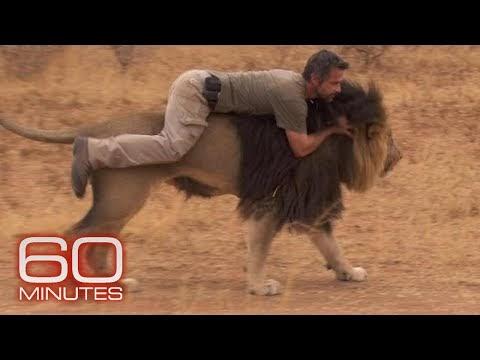 The lion whisperer