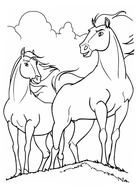 ausmalbilder pferde spirit  cartoonbild