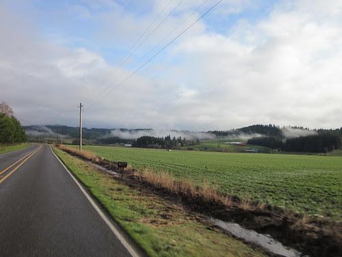 Low-lying clouds, Dairy Creek Rd