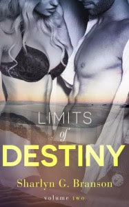 Limits of Destiny 2 Cover