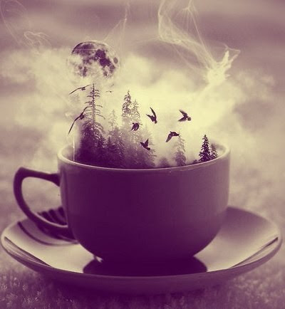 birds, fantasy, fly, lost, moon, tea, trees
