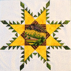 002 Feathered Star Quilt Block