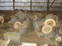 Unsplit logs in the barn
