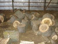 Unsplit logs in the barn