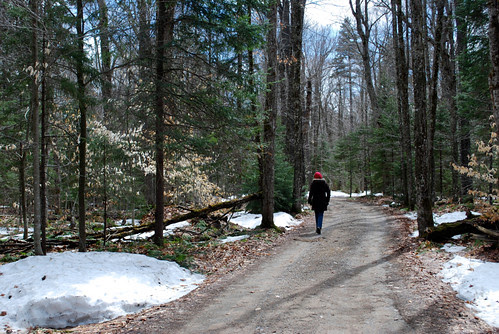 April walk in the mountains