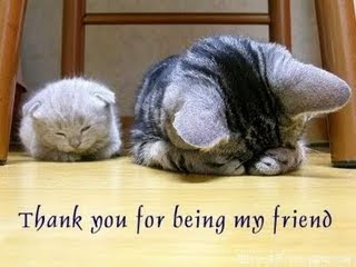 ThankYouFriend
