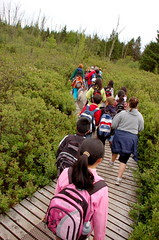 Burns bog field trip - 25