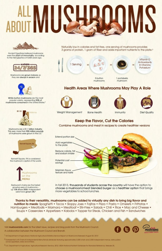 THE MUSHROOM COUNCIL MUSHROOM INFOGRAPHIC
