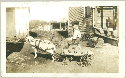 goat cart with boy