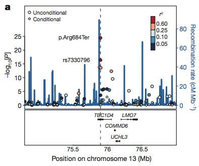 GWAS find mapping in T2d