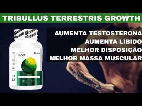 TRIBULLUS TERRESTRIS GROWTH AUMENTA TESTOSTERONA LIBIDO DISPOSIÇÃO MASSA MUSCULAR CASA MAROMBA TESTO