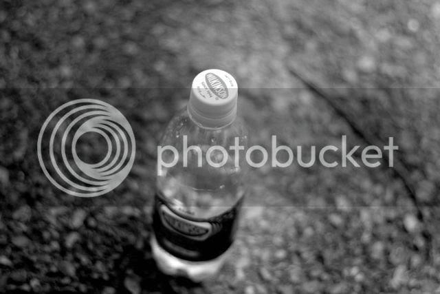 photo _MG_4825_zps994lgzsm.jpg