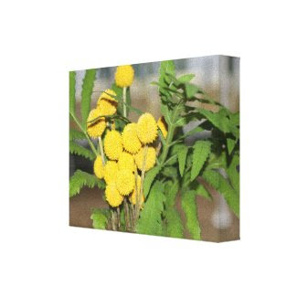 Sweet Yellow Flowers Print wrappedcanvas