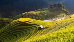 """3 điểm đến """"tuyệt vời"""" không thể bỏ qua khi du lịch ở Việt Nam"""